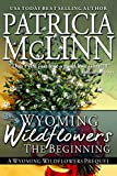 Wyoming Wildflowers: The Beginning (A Western Romance): Prequel to Wyoming Wildflowers Series