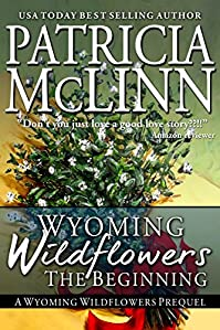Wyoming Wildflowers: The Beginning by Patricia McLinn ebook deal