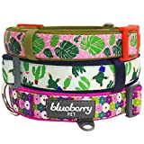Blueberry Pet Easter Spring Collars 3/4