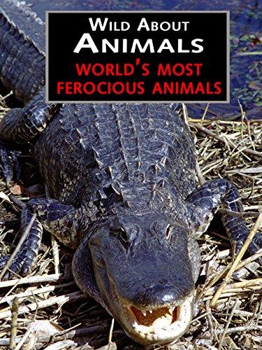 Ferocious Animals