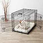AmazonBasics Double-Door Folding Metal Dog Crate - Medium from AmazonBasics