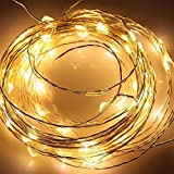 Kohree 20ft LED Starry String Lights with 120 LEDs - Wire String Lights - Warm White LEDs on a Flexible Copper Wire - for Festival - Christmas - Wedding - Holiday and Party - Plug-in Power Adapter Included