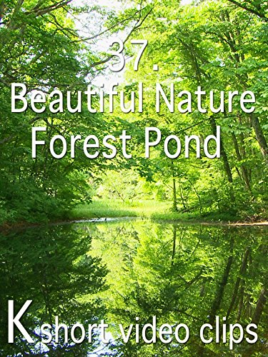 Clip: 37.Beautiful Nature--Forest Pond