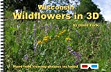 img - for Wisconsin Wildflowers in 3D book / textbook / text book