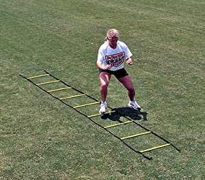 Power Systems Short Agility Ladder (15-Feet)