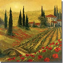 Poppies of Toscano I by Art Fronckowiak Premium Stretched Canvas Art (Ready to Hang)