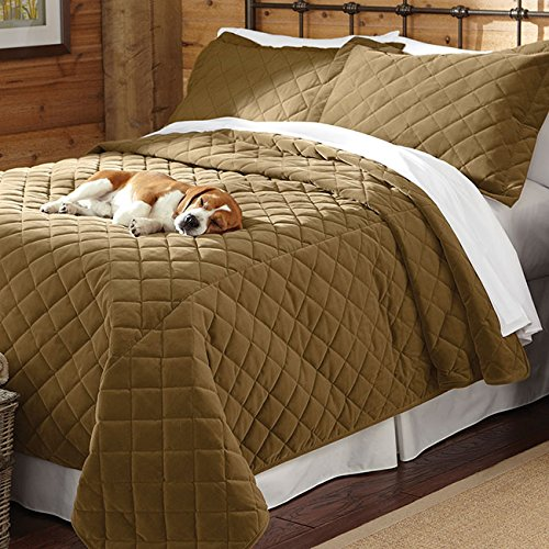 Quilted Coverlets For Beds front-986071