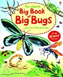 img - for The Usborne Big Book of Big Bugs: And a Few Little Ones Too... book / textbook / text book