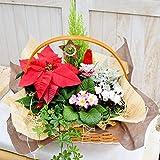 花由 冬のフラワーバスケット★森のクリスマス【3日~4日以内にお届け】