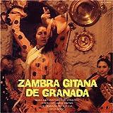 真夜中の洞穴フラメンコ~現地録音ジプシーの歌と踊り~ - ARRAY(0x1273b2d8)