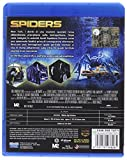Image de Eagle Pictures Brd spiders
