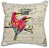 COMPASS Tropical Birds Embroiderd Sofa Decor Throw Pillow, 18 by 18