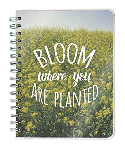 2017 Bloom 12 Month Spiral Weekly/Monthly Engagement Planner (Daily Calendar Positive compare prices)