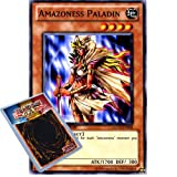 YuGiOh : GLD3-EN004 Limited Ed Amazoness Paladin Common Card - ( Gold Series 3 Yu-Gi-Oh! Single Card )