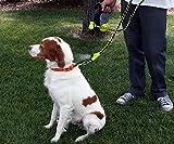Hyper Pet Cool Down Doggie, Small/Medium by Hyper Pet