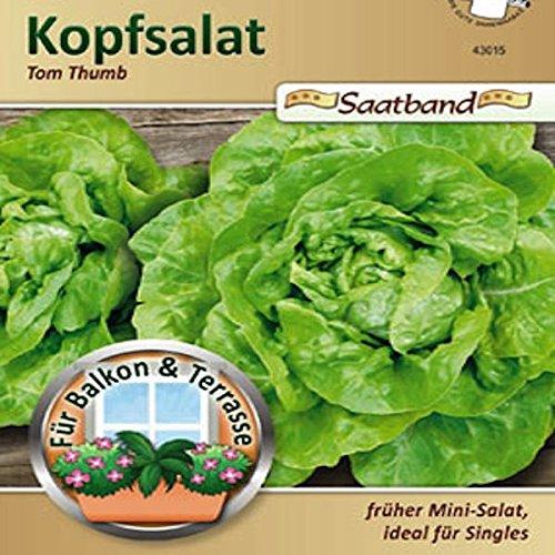 kopfsalat-tom-thumb-saatband-fur-balkon-terrasse-fruher-mini-salat-ideal-fur-singles-43015-salat