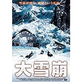 大雪崩 LBX-733 [DVD]