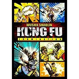 Wushu Shaolin Kung Fu Examination 2013
