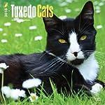 Tuxedo Cats 2016 Calendar