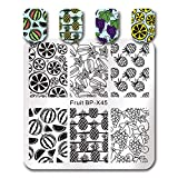 Summer Fruit Nail Art Stamping Template Tropical Punch Pattern Rectangle Image Plate Stamping Polish Needed BP-X45 (Color: BP-X45)