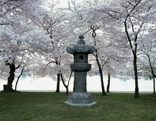 Japanese Lantern statue in West Potomac Park, Washington, DC