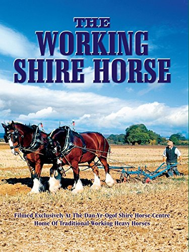 The Working Shire Horse on Amazon Prime Video UK