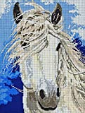 Grey Horse Large Tapestry Embroidery Set Complete Embroidery Picture Tapestry Image 35 cm x 45 cm Horses Head