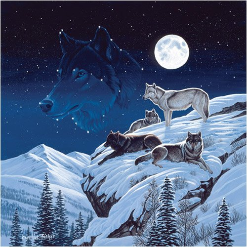 Picture of SunsOut Cynthie Fisher Moonlight Sentinel Jigsaw Puzzle 500pc (B0014O3BUW) (Jigsaw Puzzles)