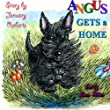 Angus Gets a Home: Volume 1