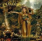 Songtexte von David Hicken - Goddess