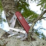 Victorinox Swiss Army Huntsman II Pocket Knife, Red