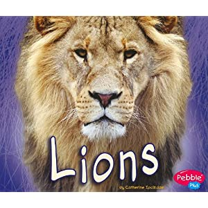 Lions (African Animals) (Pebble Plus: African Animals)