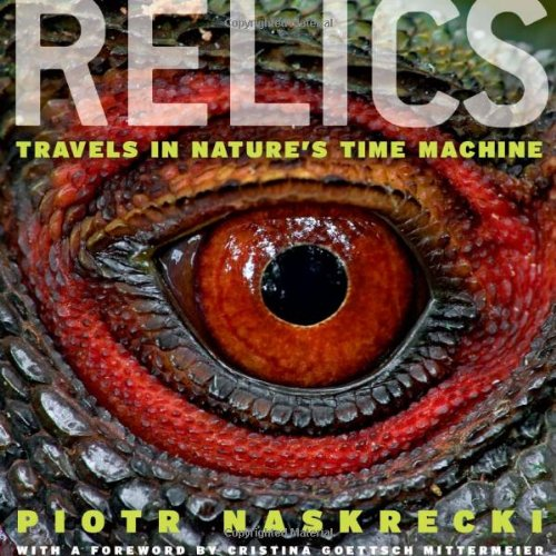 relics-travels-in-natures-time-machine
