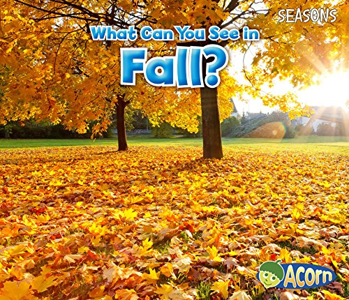 What Can You See in Fall? (Acorn)