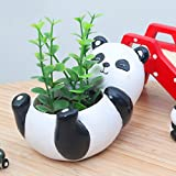 Messagee Cute Panda Succulent Pots with Drainage Resin Mini Flower Pot Garden Plants Vase Desk Flower Decoration (Color: Panda)