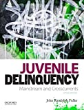 img - for By John Randolph Fuller Juvenile Delinquency: Mainstream and Crosscurrents (2nd Edition) book / textbook / text book