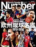 欧州蹴球名鑑2013