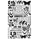 Botanical Remnant Rubs by Tim Holtz Idea-ology, 5 x 7 Inch, 2 Sheets, Black/White, TH93119