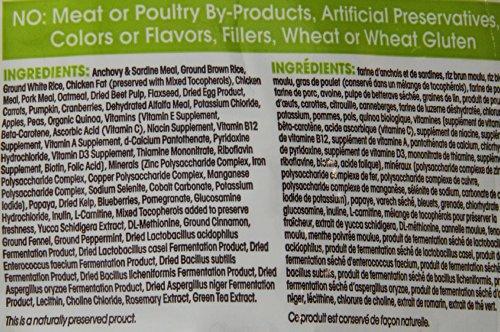 Holistic Recipe Dog Food Price Philippines