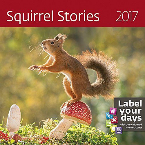 Squirrel Calendar - Calendars 2016 - 2017 Calendar - Cute Animal Calendar - Photo Calendar - Squirrel Stories Calendar by Helma