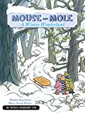 img - for Mouse and Mole, A Winter Wonderland (A Mouse and Mole Story) book / textbook / text book
