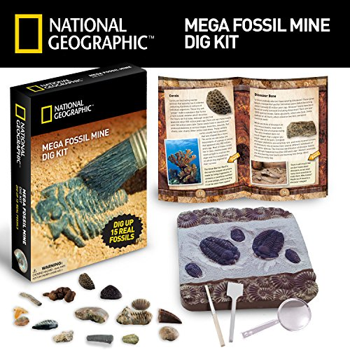 Mega Fossil Mine - Dig Up 15 Real Fossils with NATIONAL GEOGRAPHIC JungleDealsBlog.com