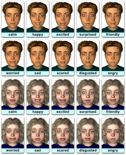 Face-cards: Emotion Flashcards by Dunedin Multimedia (2013-10-24)