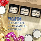 Scented Candles - Vacation - Set of 3: Sea Breeze, Hawaiian Lei, and Awapuhi - 3 x 4-Ounce Soy Candles