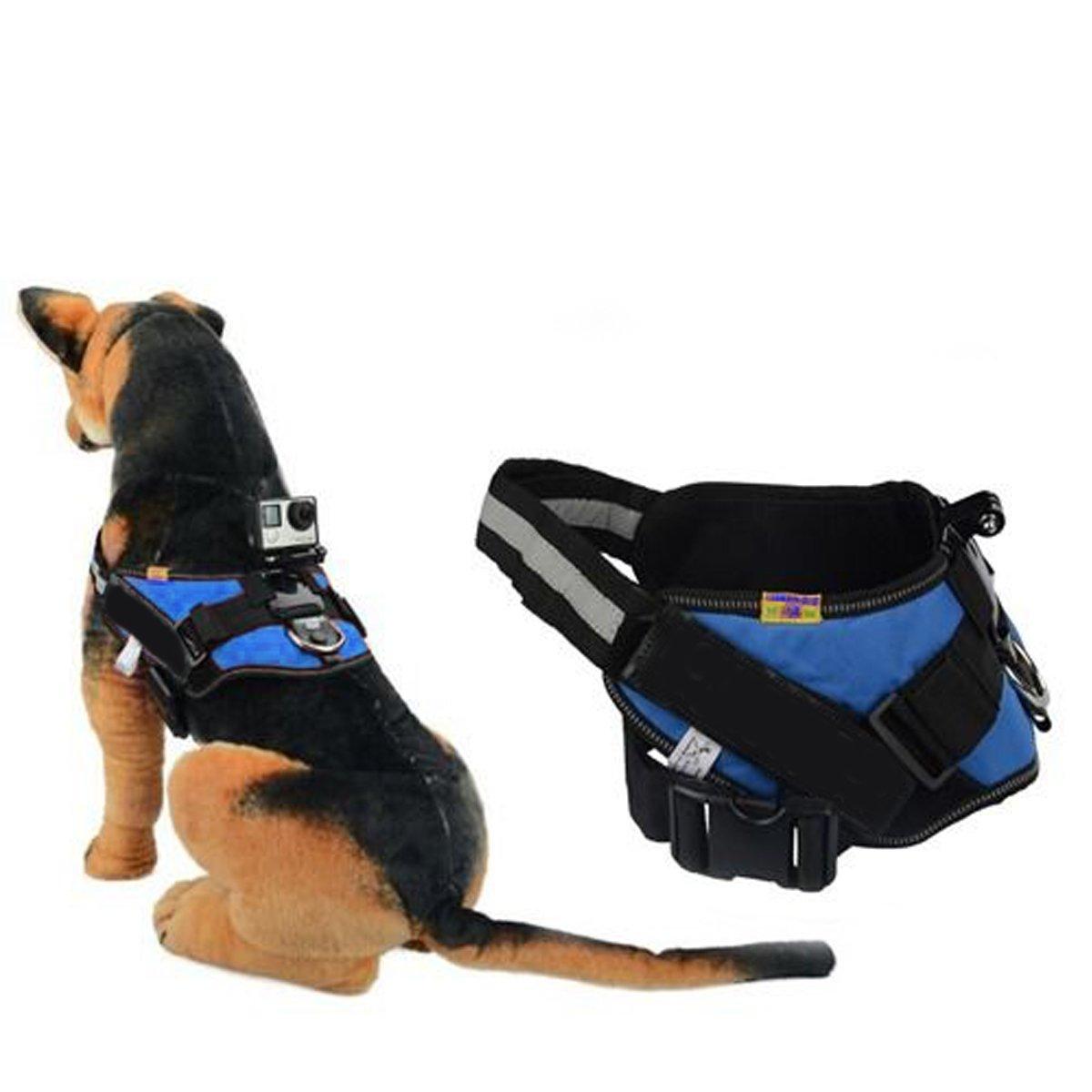 Qumox Fetch perro cámara arnés ajustable de montaje de la correa para GoPro HD Hero SJ4000 SJcam encaja 35-120 LBS perro azul  Electrónica Revisión del cliente y la descripción más