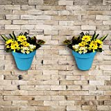 Wonderland Set of 2 High Quality PP Wall mounted & vertical garden planter / pots in Blue( Nail & accessories included)