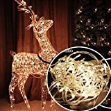 #6: Citra LED RICE string strip Warm White decoration lights 18 METRE LONG - Diwali / Festival / Wedding / Gifting / Xmax / New Year - The perfect Gifting in 'Gift' Box!