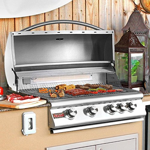 Blaze 32-Inch 4-Burner Built-In Propane Gas Grill With Rear Infrared Burner - BLZ-4-LP (Built In Bbq Grill Propane compare prices)