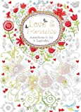 Love and Friendship: Adventures in Ink and Inspiration (Hobbies and Craft)