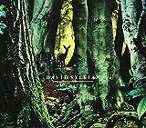Manafon by David Sylvian (2009-09-15)